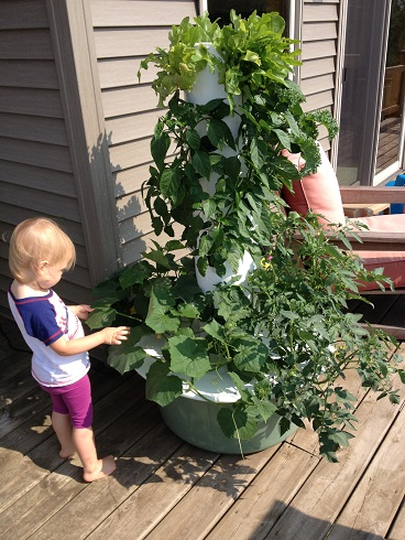 Tower Garden - Grow Your Own Food